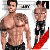 VN-avi-Male-Jay