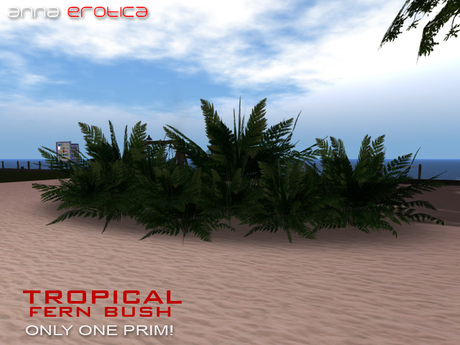 Anna Erotica - Tropical Fern Bush - 1 Prim!