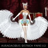 ::AU::   White Ostrich Feather Fans