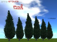 AnnaErotica - 6 Pine Trees - 1 Prim!