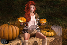 shi.s.poses which pumpkin pose - pumpkins included - NO BENTO