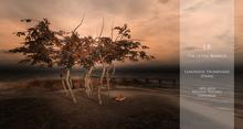 LB_Lemonade_Promenade{Autumn}