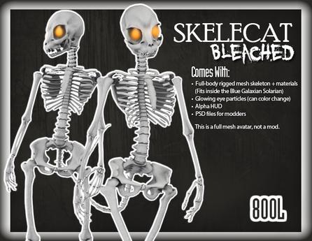 ::Static:: Skelecat - Bleached