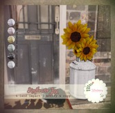 *windsong. { sunflower jug : white }