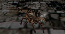 #Scary MESH Spider (rez me)