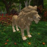 Lion Avatar 01