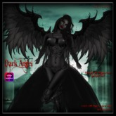 CB~Dark Angel