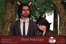 c( TC ) Short Neko Ears