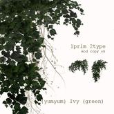 {yumyum} Ivy (green)