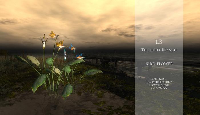 LB Bird Flower With Flowers Menu