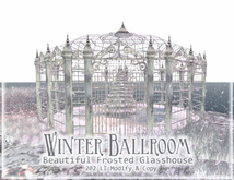 Boudoir Winter Ballroom or skateing rink