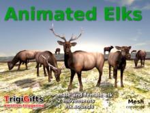 Animated Elks