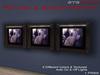 Anna Erotica - Picture & Advert Frame II, 9 Textures Auto Light
