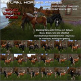 WCP~HORSE NATURALS POSER PACK