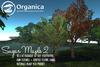 [ Organica ] Sugar Maple 2 (MC)