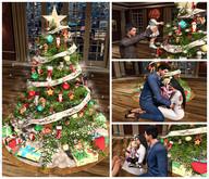 <Heart Homes> Merry Christmas Tree FAMILY  (BOXED)