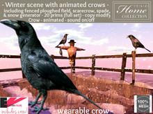 Crow, Scarecrow