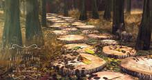 Sari-Sari - Wood Slab Path
