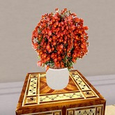 Chrysantheme Potted Plant