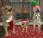 {ACD} Pups Family Christmas