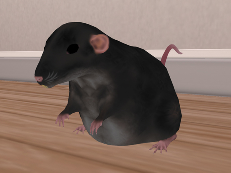 +Nelaware+ Rat Black ~1 Prim~