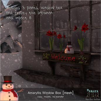 -Hanaya- Amaryllis Window Box [mesh]