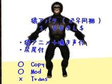 Monkey_AV    BOX