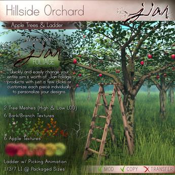 Jian Hillside Orchard :: Apple Tree