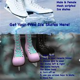 Mesh men's and ladies ice skate giver