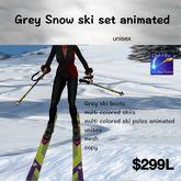 Grey ski boots multi poles & skiis animated (box)