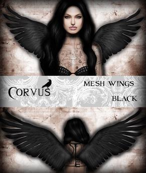 Corvus : Mesh Wings Black