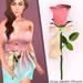 Single Rose Pink