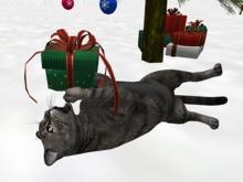 Christmas Kitty - Mesh - Full Perm