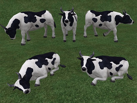 B&W Cow - Mesh - Full Perm