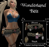 .:-CatniP-:. Wonderland Belt & stockings