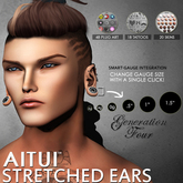 AITUI - Ear System: Gen 4, Heart Plugs