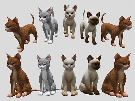 Cat Pack - Full Perm