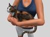 Holding cat pic 4