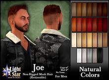 *LightStar-Hair-Joram-Natural Colors