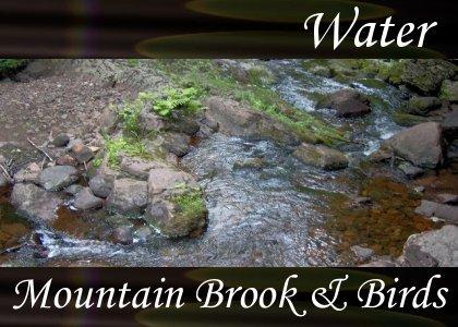 Atmo-Water - Mountain Brook & Birds 0:30