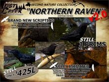 Lost Creek Northern Raven version 2 UPDATED!
