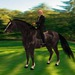 AKK MESH Riding Horse Black Chrome
