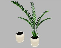 Small Fern Plant in Vase - Mesh - Full Perm
