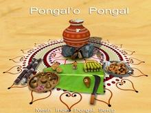 MADRAS Pongal Setup from Mesh India