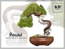 KR Design - Bonsai Tree