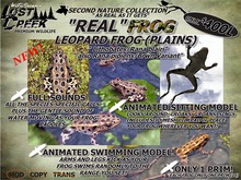 Lost Creek REAL Frog (Plains Leopard) Living Addition
