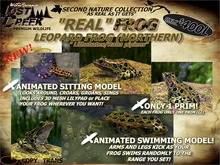 "Lost Creek ""REAL"" Frog (Northern Leopard) Living Addition"
