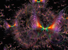 colortastic Butterfly's \\ by Delain Canucci
