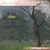 JIAN :: Wise Owl's Tree