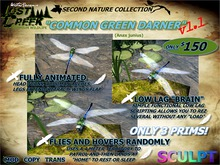 Lost Creek FLYING Dragonfly Common Green Darner v1.1
